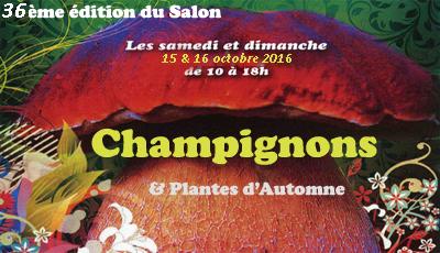 salon-champignons2016
